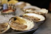 Oysters - Randy Fox
