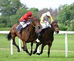 Horse Racing - Randy Fox